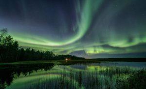 คู่มือการเดินทางมังสวิรัติของฟินแลนด์